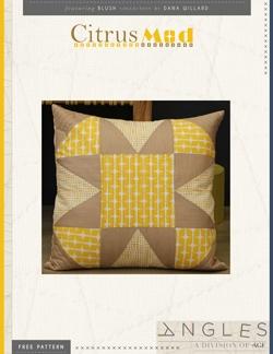 Citrus-Mod-Pillow-instructions