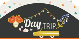 Day Trip Collection by Dana Willard