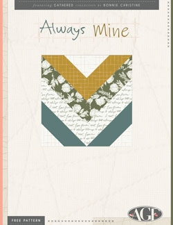 Always Mine Pillow by AGF Studio Instructions